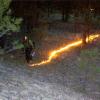 Coconino National Forest Begins Prescribed Burn