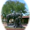 ADOT Advises Desert Caballeros Trail Ride Road Closures