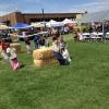 24th Annual Cornfest