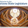 Arizona 52nd Legislature Picks Committee Chairs