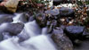 Oak Creek Watershed Issues