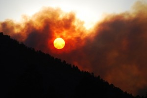 Flagstaff AZ Wildfire by Pushpa Carbaugh, photographing for the Sedona Times/Sedonaeye.com