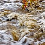 Merrill Roberts' Monsoon in Sedona