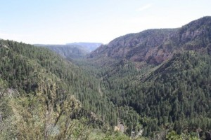 Oak Creek Canyon from the Vista photo courtesy of  Oak Creek Watershed