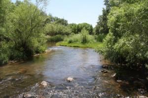 Oak Creek at Mormon Crossing photo courtesy of Oak Creek Watershed