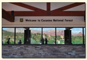 coconino national forest welcome center