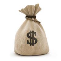 money dollar bag