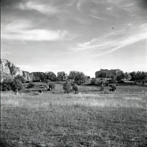 Dan Daggett Little Horse Park 1957