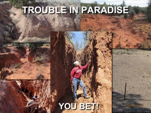 Dan Daggett Trouble In Paradise